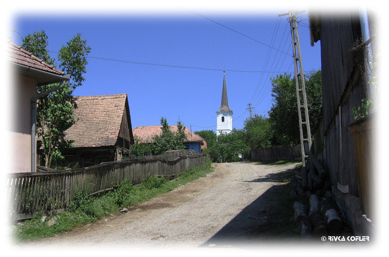 צ'הטל טרנסילבניה