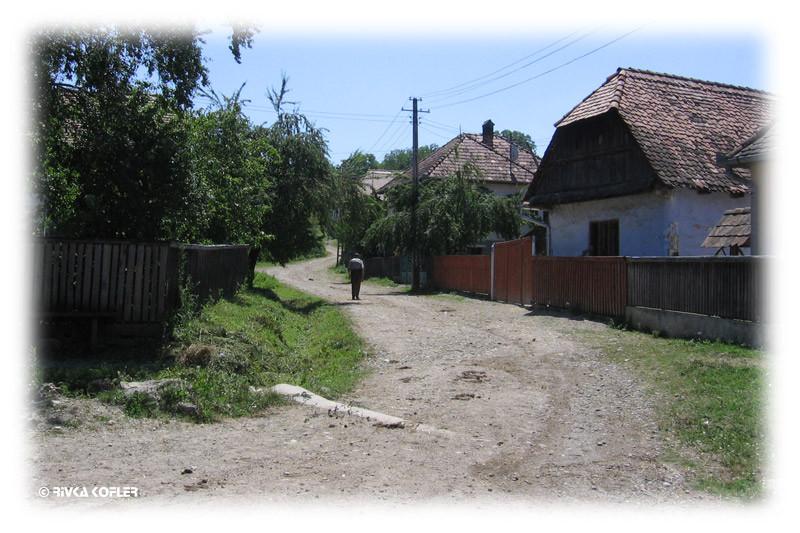 שבילי הכפר