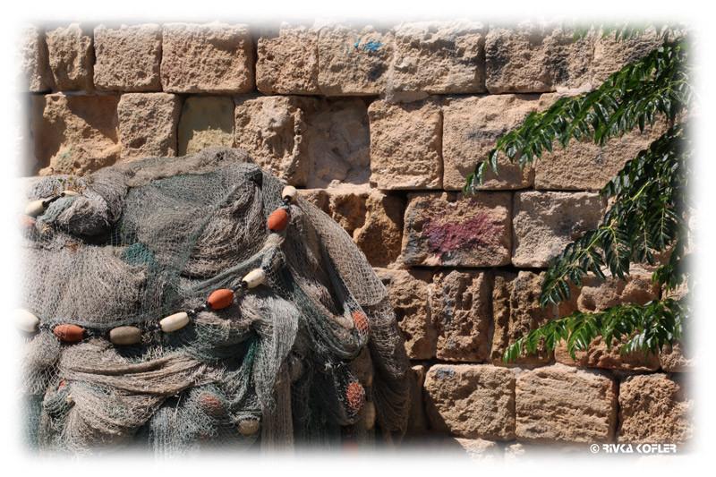 רשת דייגים בעיר העתיקה