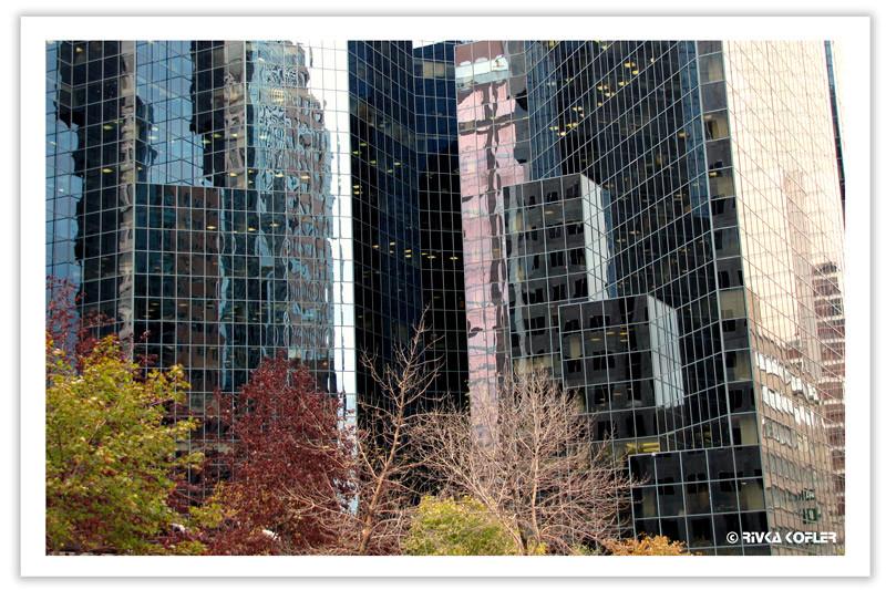 השתקפות בבנייני זכוכית