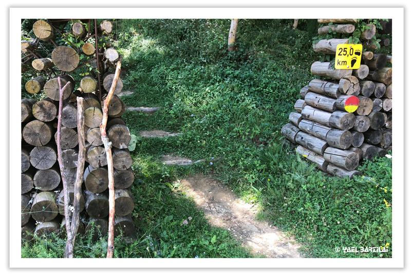 מסלול הליכה במצובו