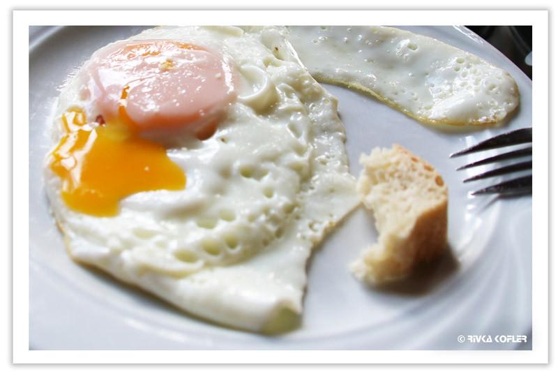 ביצת חופשה