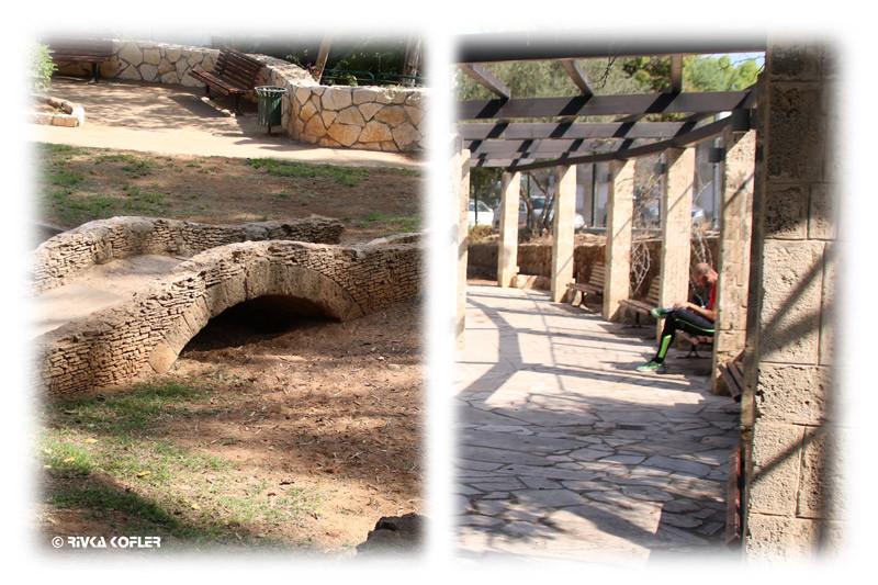 פרגולה וגישרון בגן אברהם