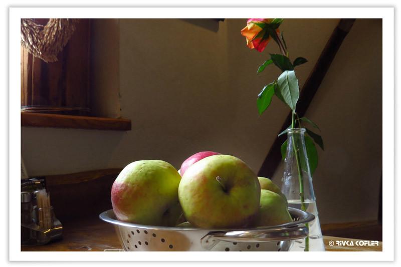 תפוחים וורד