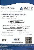 BlueStar OHSAS 18001.jpg