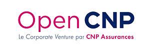 Open_CNP_RVB_baseline.jpg