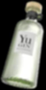 Yu-Gin-2.942-copie-compressor.png