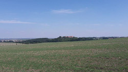 Blick zur Konradsburg