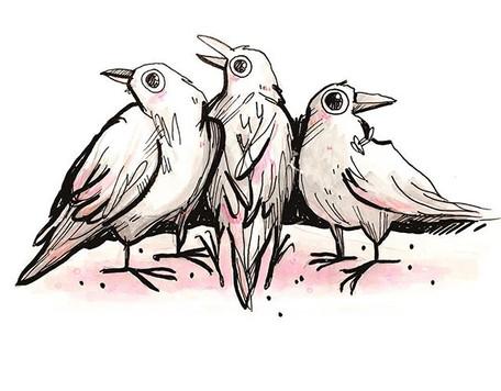 Raving Ravens
