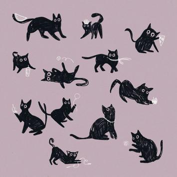 Velveteen cat