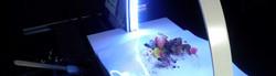 Ciencia-y-Cocina-Curso-Cocineros-5.jpg