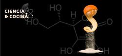 Jornadas de Ciencia y Cocina LUGO
