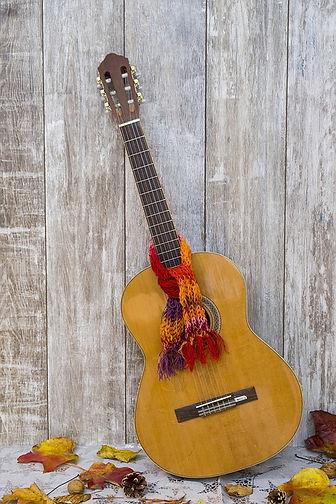 guitar-2942309_960_720.jpg