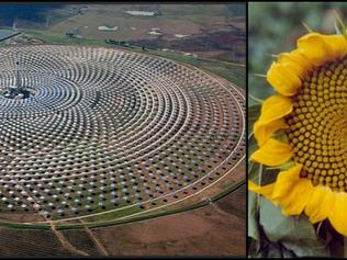 Fonte rinnovabile e fonte d'ispirazione: la Natura è due volte alleata dell'energia.