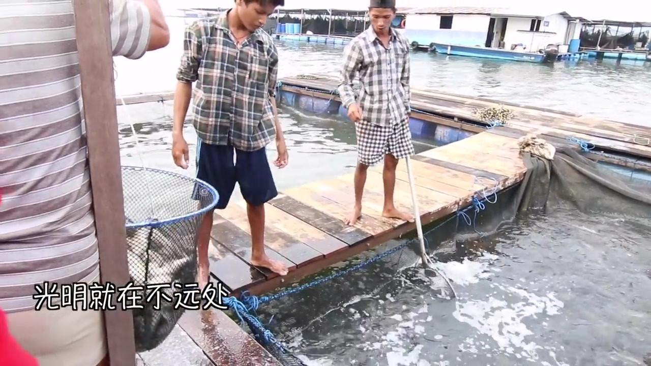 新加坡心灵法门 11_9放生 - 副本.mp4
