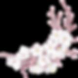 花 | 心灵法门 | 加拿大观音堂文化中心