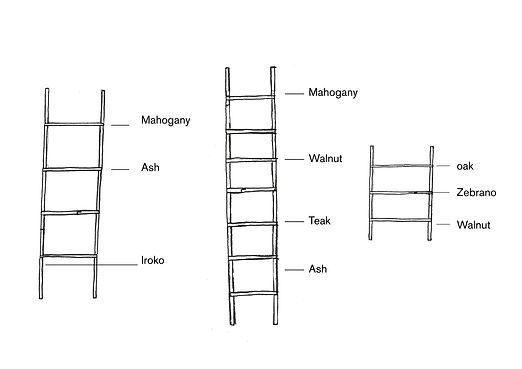 ladders_web.jpg