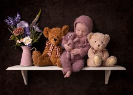Bear-Shelf.jpg