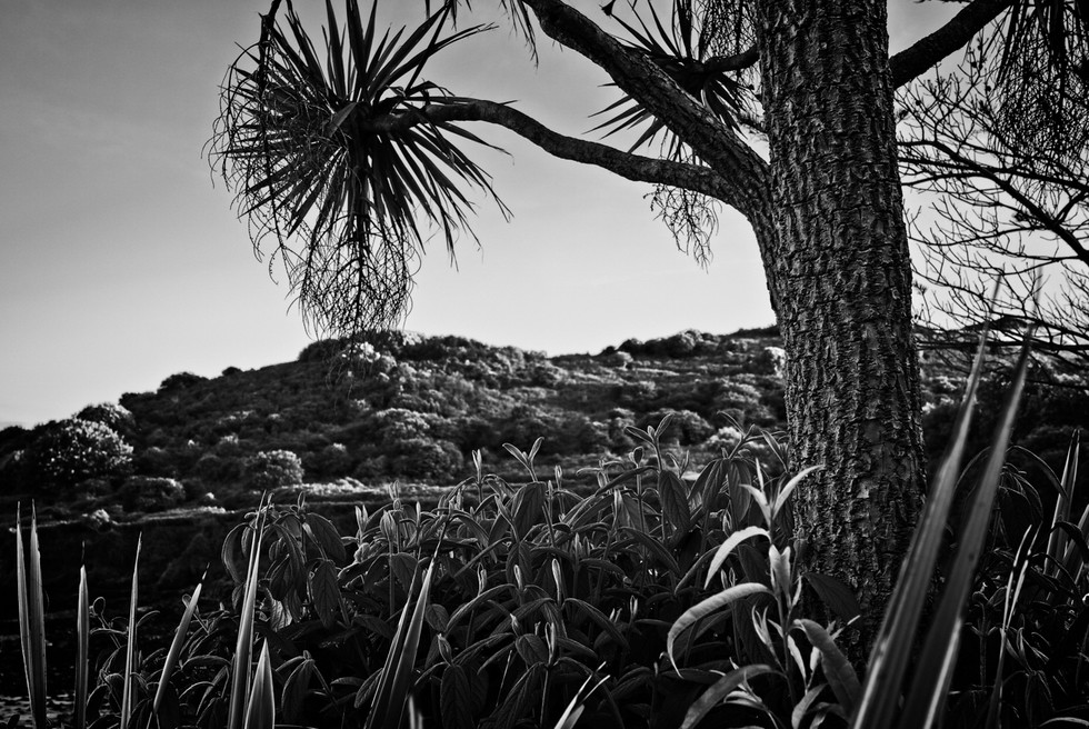 Langland Bay-33.jpg