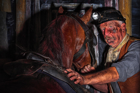 Pit Pony And Miner