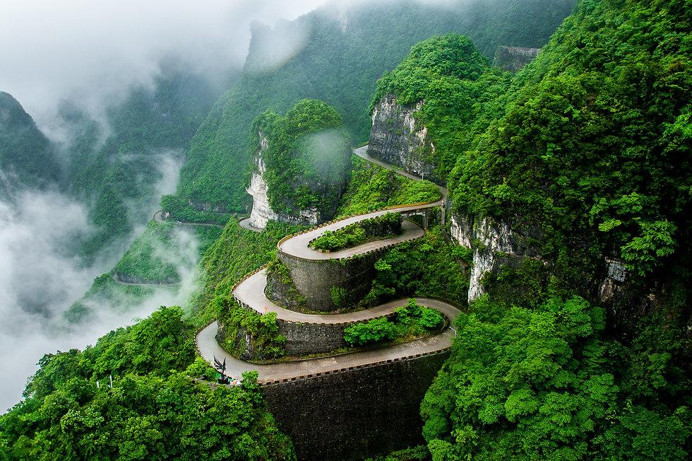 shutterstock_727336858 green path.jpg