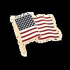 flag_pin_ft_shop_400x400_crop_center@2x.