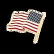 flag_pin_ft_shop_400x400_crop_center%402