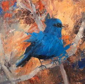 Blue Indigo Bunting