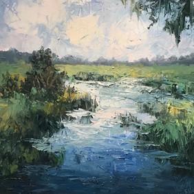 Marsh Dreams