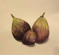 Figs, watercolor, 2018