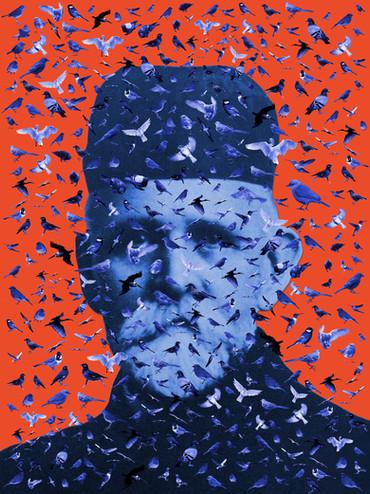 Fugle-Mortensen (A) (2019)