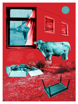 Cows in the City (2019)