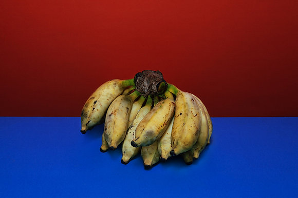 buah #36