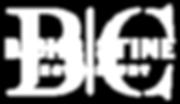 white sec. logo watermark.png