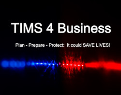 TIMS 4 Business