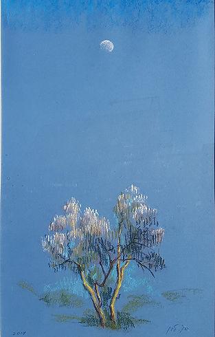 עץ זית וירח.jpg