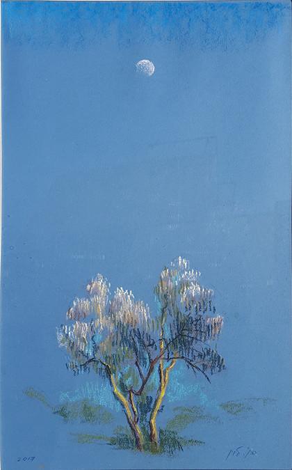 Оливковое дерево и луна