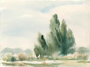 נוף 2.jpg