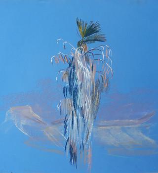 Palm in the desert 1
