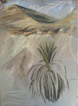 Palm in the desert 2