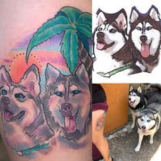 Her Huskies