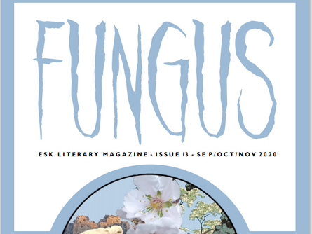 The New Age of FUNGUS Magazine