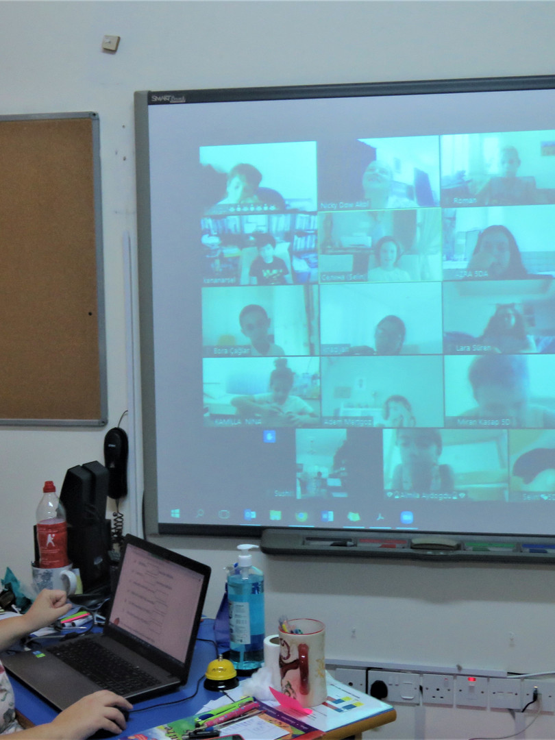 online learning using Zoom