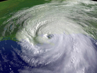 Personal Insurance Adjuster Discusses Hurricane News Reports in Texas