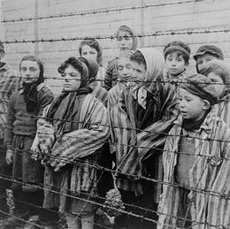 General Holocaust Research