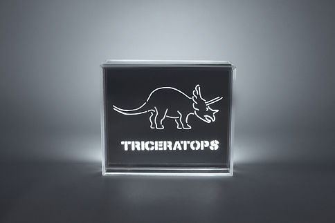 Triceratops Dinosaur LED Light - Skin