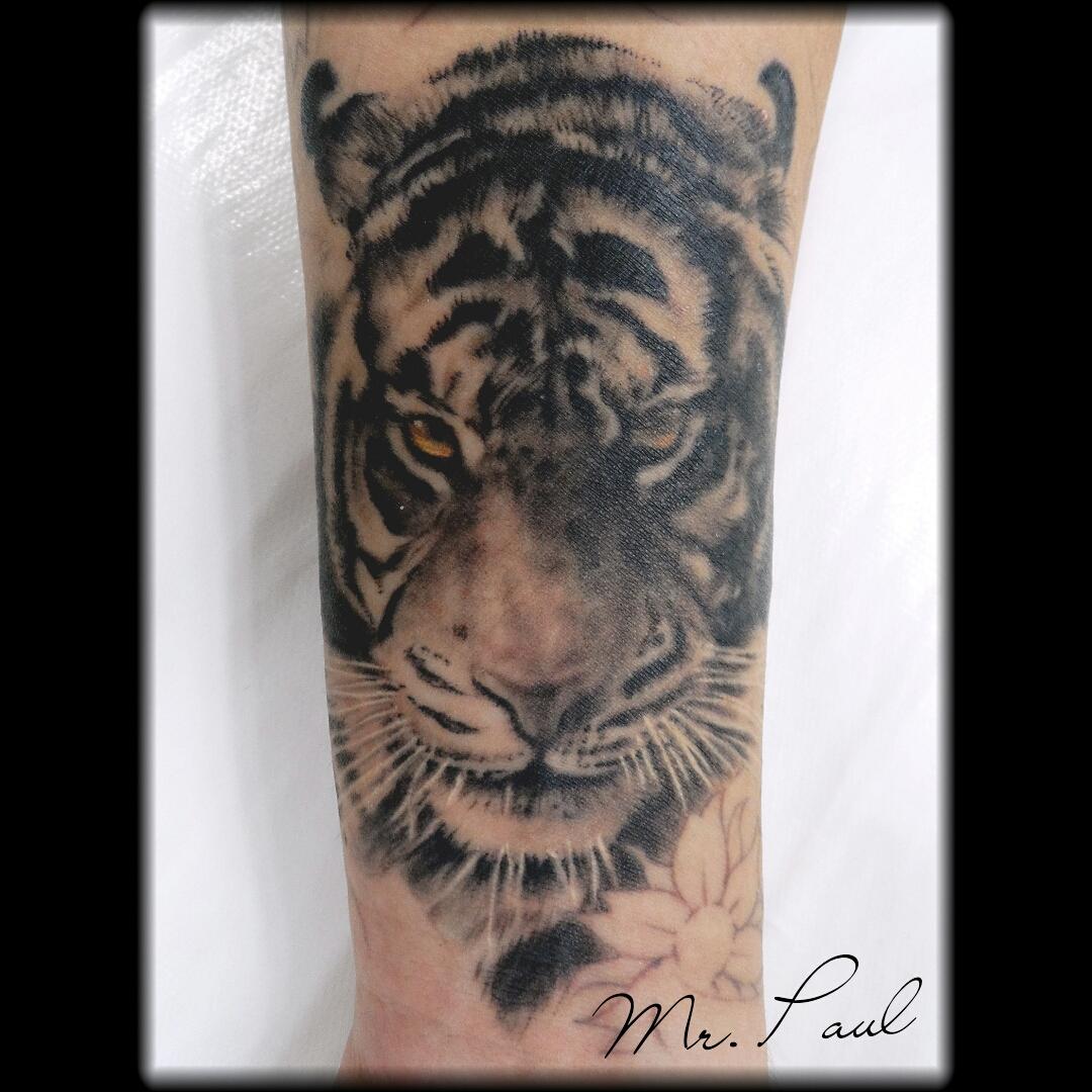 tigre+antebraço_tattoo_mrpaul_dermographic