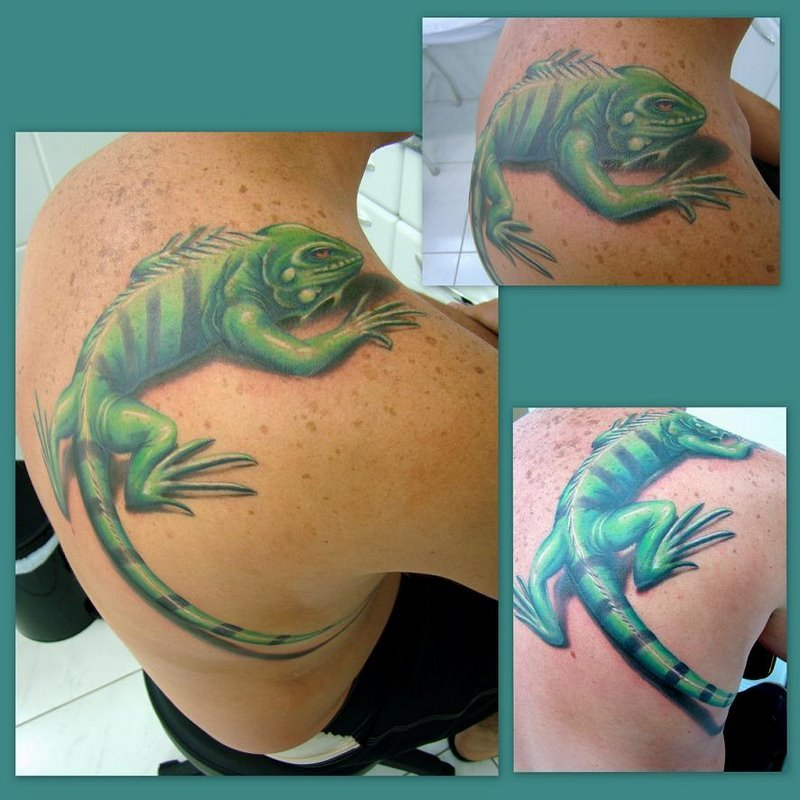 iguana+costas_mr+paul_dermographic