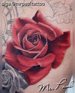 rosa vermelha realismo tatuagem tattoo m