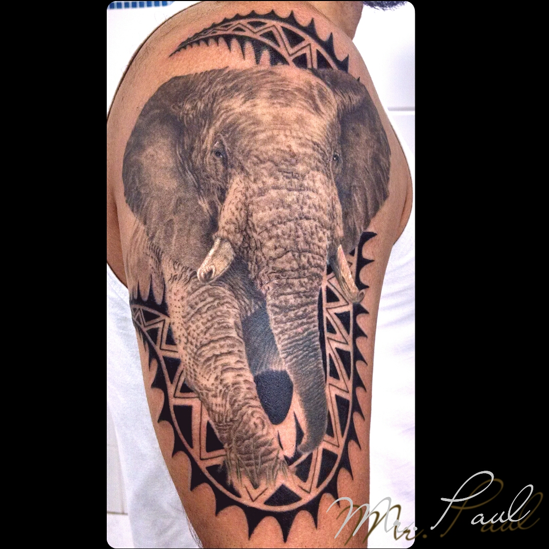 elefante+braço_tattoo_mrpaul_dermographic_ribeirão+preto+
